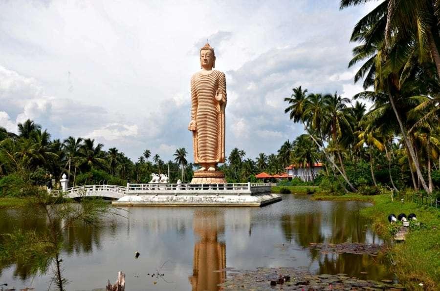 Самые дешевые туры в Шри-Ланку