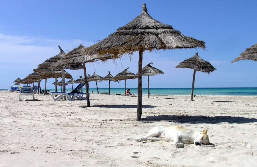 Туры в Тунис: цена
