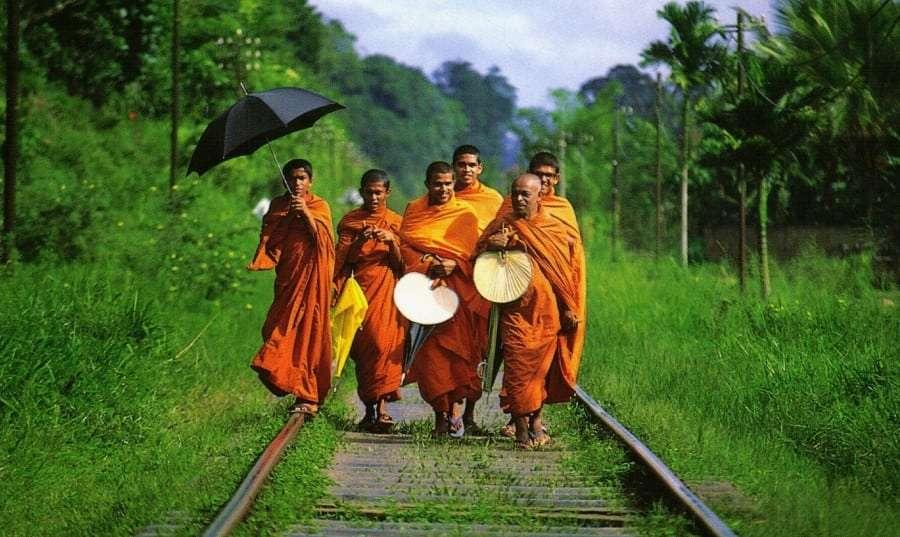 Туры в Шри-Ланку - цены