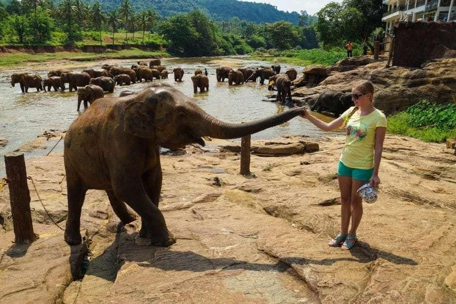 Горящие туры в Шри-Ланку из Одессы