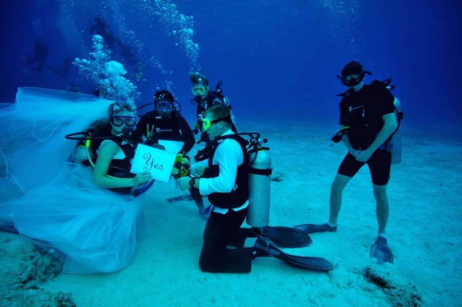 Свадьба на Мальдивах - отзывы