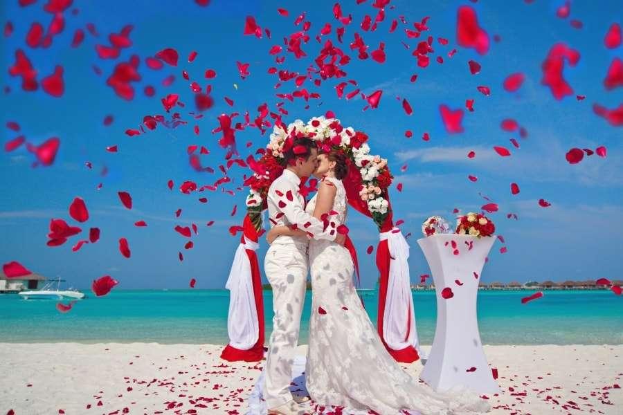 Свадебный тур на Мальдивы - цена